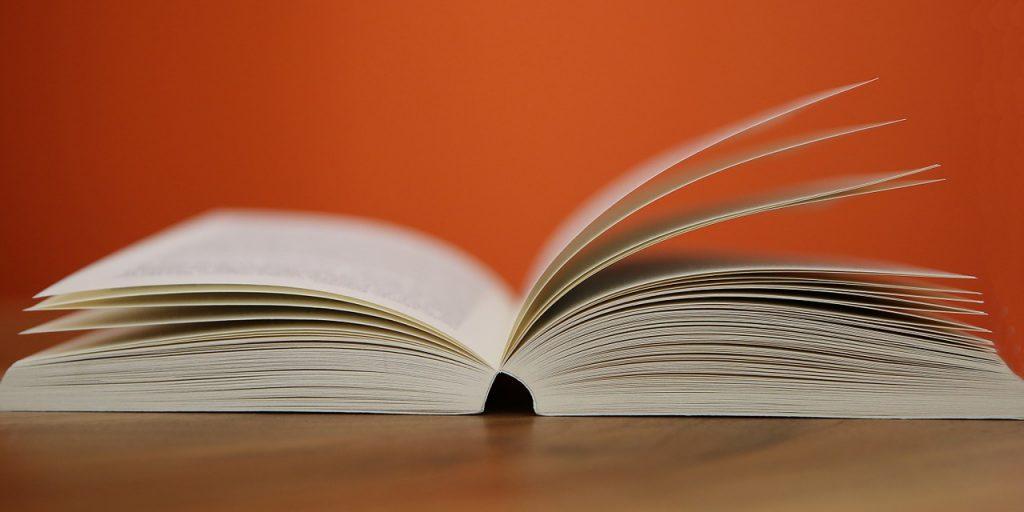 CATBLOG_Book